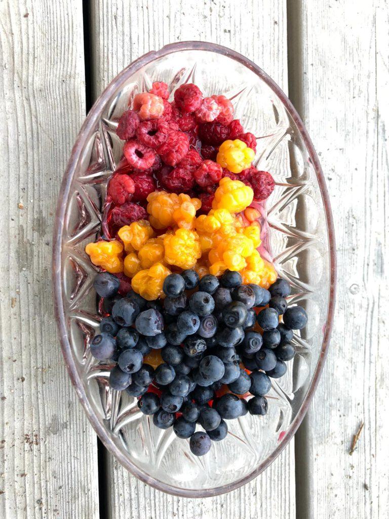 Beeren sammeln - lecker essen!